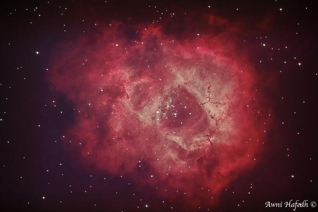 Rosette Nebula,                                Awni Hafedh