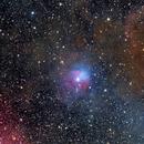 The Raspberry Nebula SH2-263/ VDB38, SH2-265, SH-2-264 in Orion. DSLR Image,                                Kees Scherer