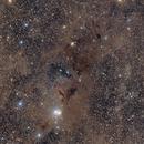 Dust in the Perseus Molecular Cloud - IC 348 & NGC 1333,                                Jarrett Trezzo