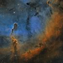 Elephant Trunk Nebula (vdB 142) in Cepheus - Hubble Palette,                                Steve Milne