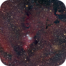 The Cone and Fox Fur Nebula,                                Gabe Shaughnessy