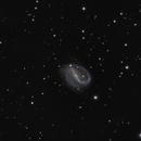 NGC7479,                                bilgebay