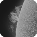 Solar huge prominence, August 15 2021,                                Ilan Shapira