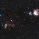 Orion Region,                                David Dvali
