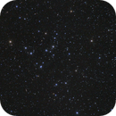 Melotte 111, the Coma Berenices Star Cluster,                                BrettWaller