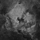 NGC7000,                                wjf56