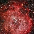 NGC 2244 The Rosette Nebula,                                Moorefam