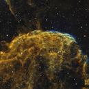 IC 443,                                Dan Wilson