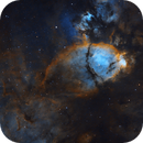 Fish Head Nebula Hubble Palette,                                Rodd Dryfoos