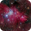 Sh2-273 The Cone Nebula and Christmas Tree Cluster Region,                                Greg Nelson