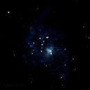 M33,                                Dylan Woodbrey