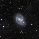 NGC 1097,                                Rick Stevenson