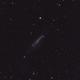 NGC4236,                                DiiMaxx