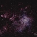 Tarantula Nebula (NGC2070),                                Ricky Goodyear