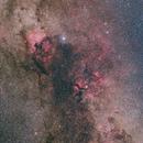 Northern Cygnus 2020,                                Jeff Ball