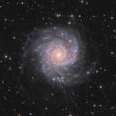 M74,                                tommy_nawratil