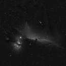 Horsehead Nebula in Ha,                                Samara