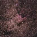 Pelikan u. Nordamerikanebel NGC 7000,                                Robert77