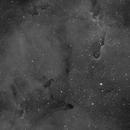 IC1396,                                Brett Alcox