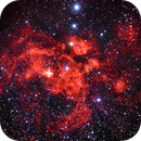 NGC 6357 Lobster Nebula,                                Tom