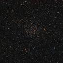 NGC 7789, Caroline's Rose,                                Kathy Walker