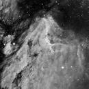 Pelican Nebula (IC50701) in Hα,                                Jose Carballada