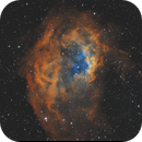 Sh2-261 Lower´s Nebula,                                Iñigo Gamarra