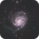M101 LRGB PINWHEEL GALAXY,                                Michael Caller