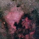 NGC 7000 + Pelikan Nebula,                                AC1000