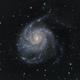 Pinwheel Galaxy 2020,                                Jeff Ball