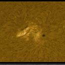 AR 2781 in multiple wavelengths,                                Alan