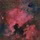 NGC7000 4 PANEL MOSAIC,                                Manel Martín Folch