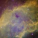 NGC1499 - Nébuleuse de Californie - SHO,                                Daniel Fournier