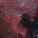 NGC 7000 vom BTM,                                Gottfried Meissner