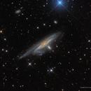 Haley's Coronet—NGC 1532,                                Russ Carpenter