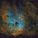 IC 410 - Tadpole Nebula,                                Kurt Zeppetello