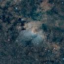 Sh2-155,                                Manoj Koushik