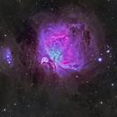 Orion Nebula,                                jsines