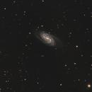 NGC 2403,                                James Patterson