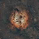 Bi-Colour IC 1396,                                Hytham