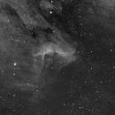 IC 5070 Pelican Nebula,                                Alan Hancox