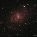 Isolating Nebula Within M33 in Ha & OIII,                                Douglas J Struble