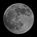 Luna One,                                Jeff Tropeano