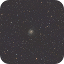 M101,                                Brad