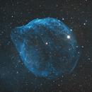 SH2-308 Dolphin Nebula,                                Frank Chen