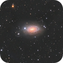M63 Sunflower with 100mm refractor + 200mm reflector,                                Tristan Campbell