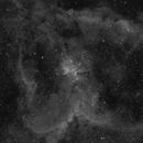 Heart Nebula,                                Aaron Hakala