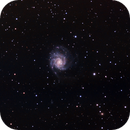 M101 Wide Field,                                umbarak