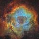 Ngc2237 : Rosette Nebula Sho,                                Maxime Tessier