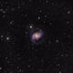 The Spanish Dancer NGC1566 in Dorado - Sadr Chili,                                Arnaud Peel